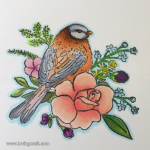 DOVE CRAFT STAMP WITH COPIC MARKERS – Spring is on it's way :-)